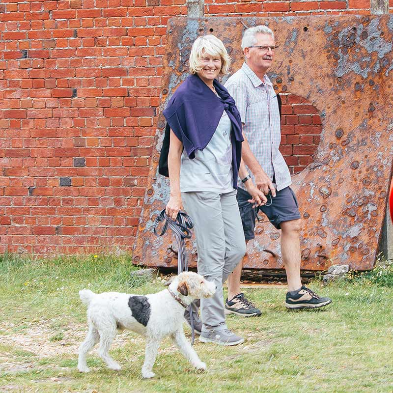 Dog Walkers in the Hurst Castle grounds